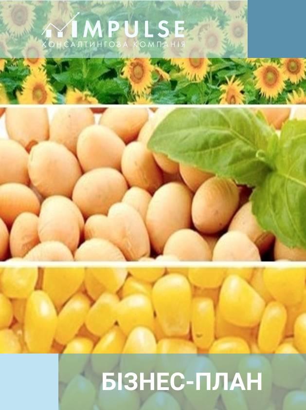 Бізнес – план вирощування соняшнику, кукурудзи та сої