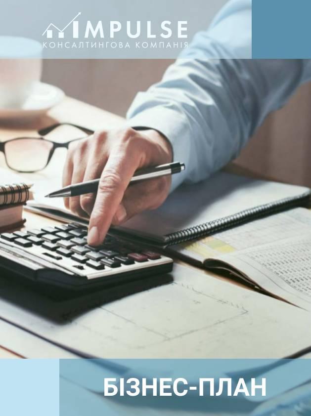 Бізнес – план надання бухгалтерських, юридичних і ЗЕД послуг