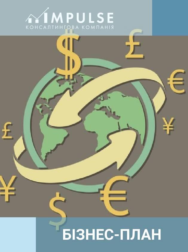 Бізнес – план компанії у сфері переказу грошових коштів