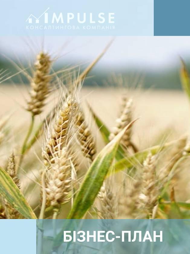 Бізнес-план створення онлайн-платформи з управління бізнесом у сільському господарстві